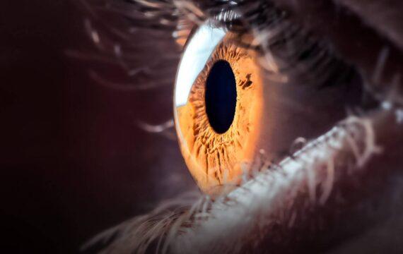 FDA keurt AI-applicatie voor detectie diabetes goed voor verkoop