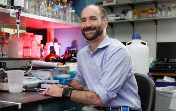 Onderzoekers bepalen risico hartziekte via genoomsequentie en EPD