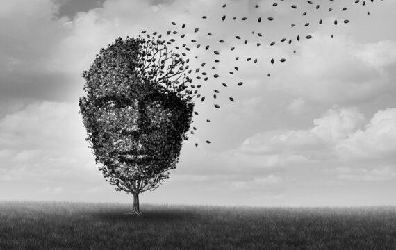 Limburg gaat voor big data-onderzoek, pilotstudie pakt Alzheimer aan