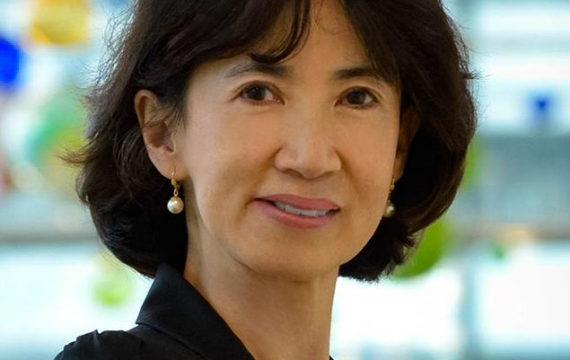 Regina Beets-Tan lid adviescommissie EU over aanpak kanker