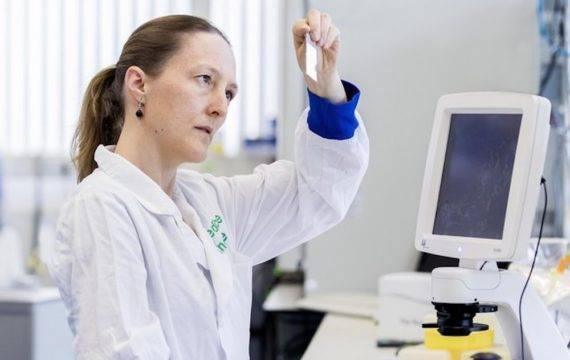 Subsidie voor 3D-screening botten voor medicijn onderzoek