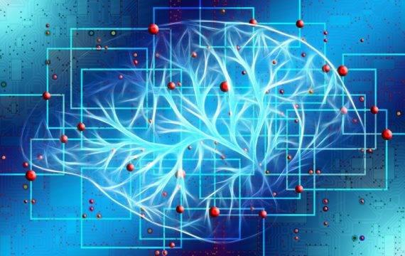 Delft, Leiden en Erasmus ontwikkelen AI-modellen voor de zorg