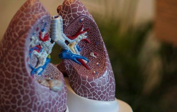 Handreiking voor e-health toepassingen COPD-patiënten
