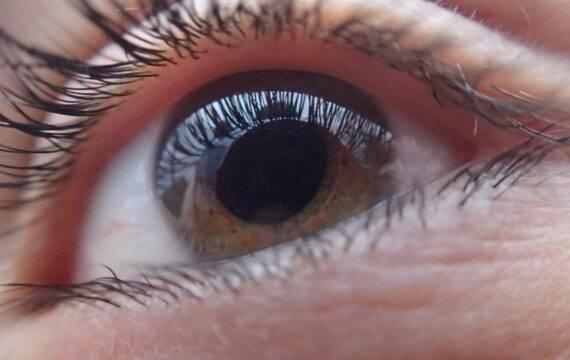 Beoordeling fundusfoto's voor 'Glaucoom in Beeld' gestart