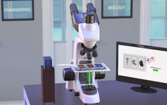 Consortium ontwikkelt universele organ-on-a-chip standaard